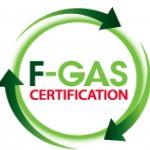 FGas-2